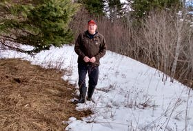 Angus MacDonald is a private woodlot owner in Cape Breton. CONTRIBUTED
