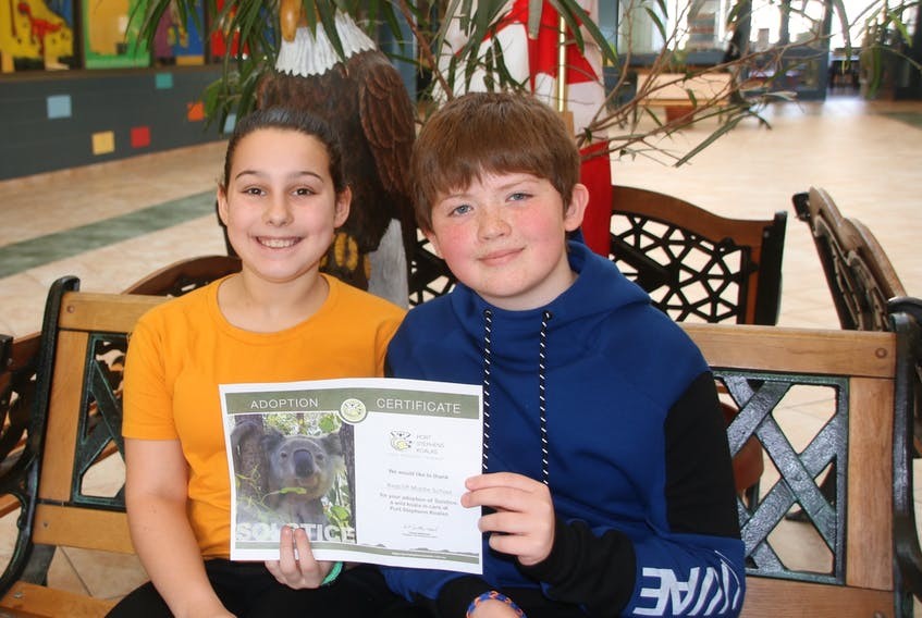 """Nora MacKenzie and Matthew Ervin are members of a Grade 7 class at Redcliff Middle School that has """"adopted"""" two koalas. They're holding an adoption certificate for Solstice, who is being cared for at Port Stephens Koalas. LYNN CURWIN/TRURO NEWS"""