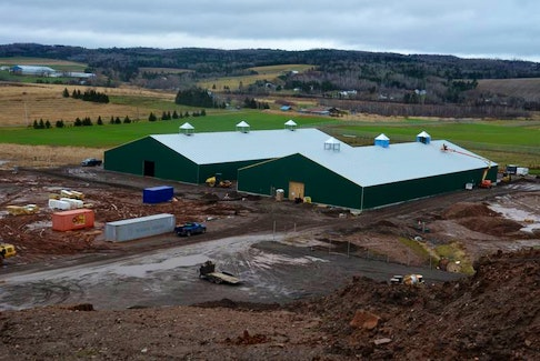 Robinsons Cannabis in Kentville was busy expanding operations to add an outdoor grow site in Hortonville in 2019.