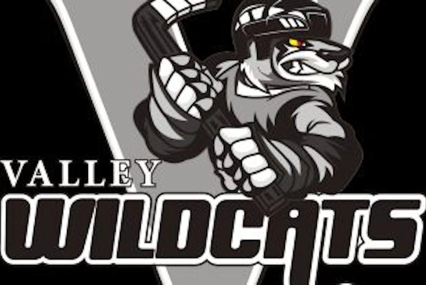 ['Valley Wildcats hockey']