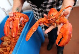Low prices and lack of demand are causing issues for Cape Breton lobster fishermen two weeks into the season CAPE BRETON POST FILE