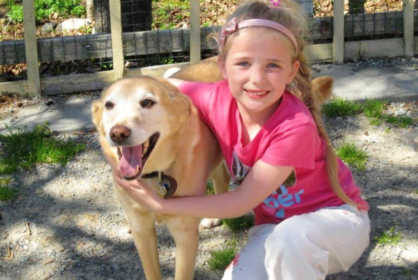 <p>Mary Thomas, a youngster from Shelburne, is once again raising funds for A Walk for Guide Dogs. She was the top fundraiser last year and has raised thousands of dollars for the cause.</p> <p>File photo</p>