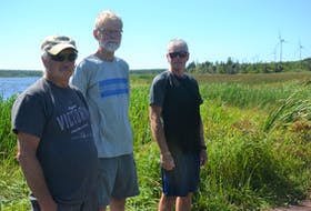Dave Fletcher, Don Humphrey and Donald Bergeron stand in front of wetland that is on the site of a proposed expansion of a wind farm near East Point. The three members of the Eastern Kings Community Association are opposed to the expansion. Approval of the project was announced this week.