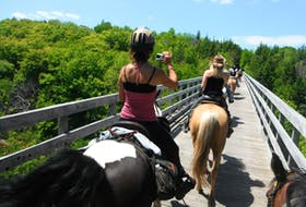 A group of equestrians rides together along the Celtic Shores Coastal Trail in Cape Breton, N.S.