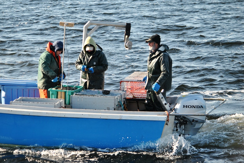 Lobsters are measured and banded by Whitney Smith, left, and Chrissie Smith, while boat captain Donnie Smith steams to where he wants to dump the trap while lobster fishing alongside the Cape Sable Island Causeway on Dec. 1. KATHY JOHNSON PHOTO
